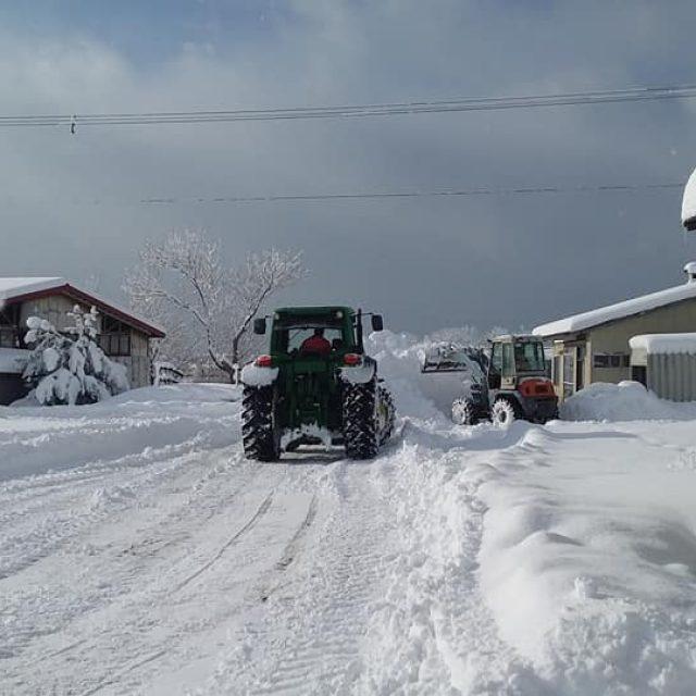 雪多し…どころじゃない