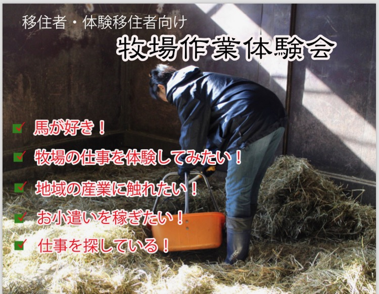 牧場作業体験会